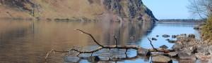 cropped-natura.jpg